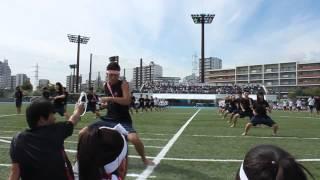 2013.10.8. 日本大学第一中学・高等学校 体育祭 初代櫻援団