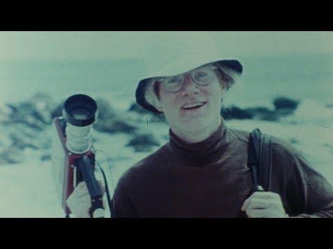 Vigencia de Andy Warhol