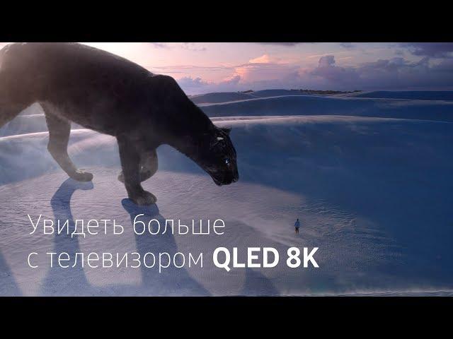 Samsung |Телевизор QLED 8K