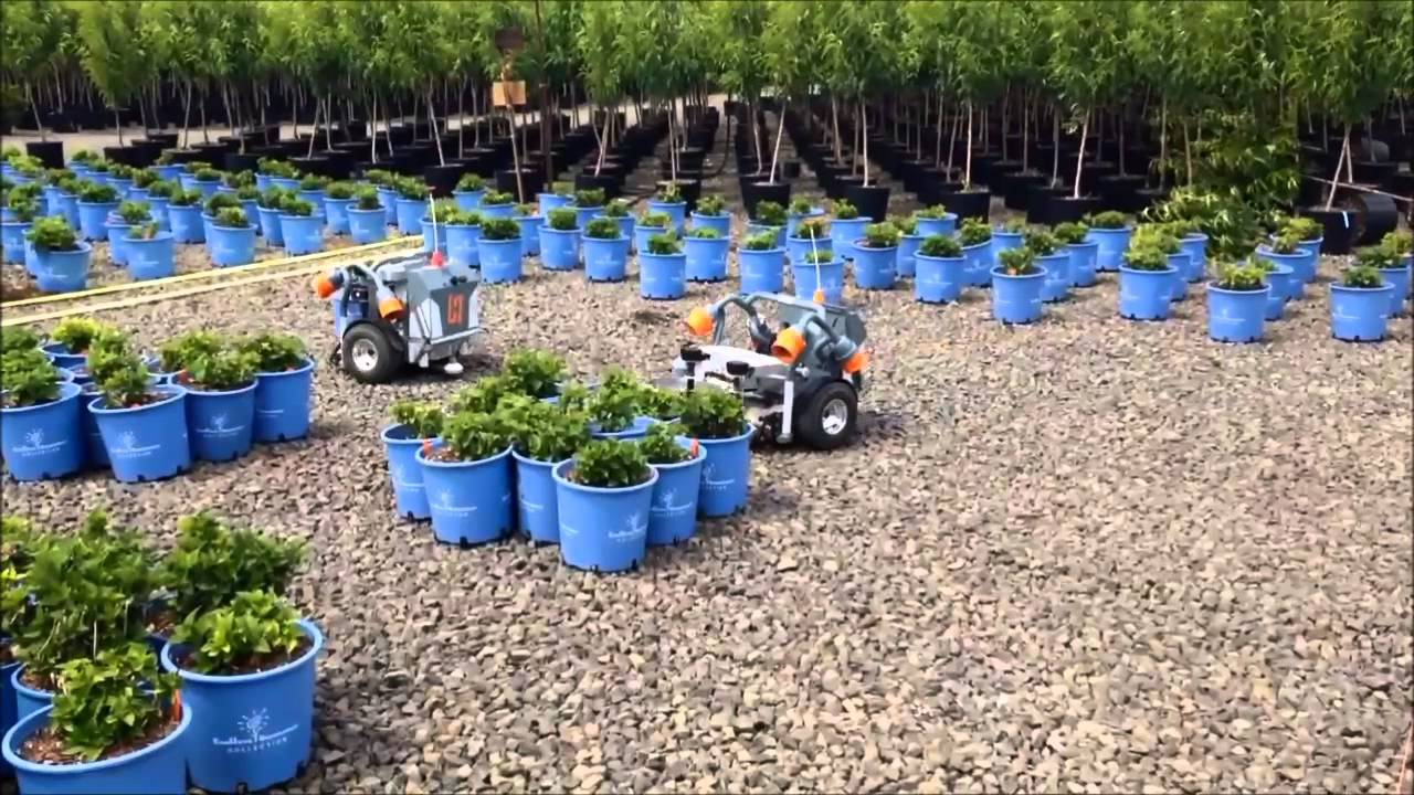 Bailey Nurseries Yamhill Or Deep Gravel With Hv 100 Part 1