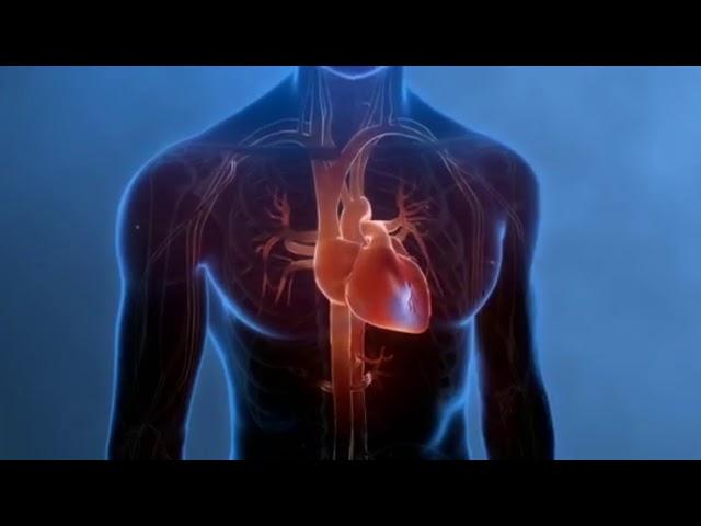 Infarto agudo de miocardio: síntomas y tratamiento.
