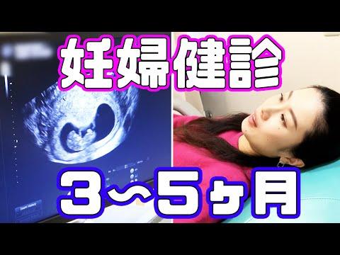 【妊娠3〜5ヶ月】妊婦健診の様子〜奇跡の連続【妊娠Vlog Vol.2】