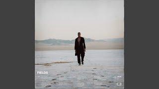 Download Fields