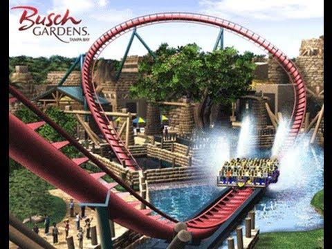 Parque Busch Gardens Tampa Florida Sheikra Youtube