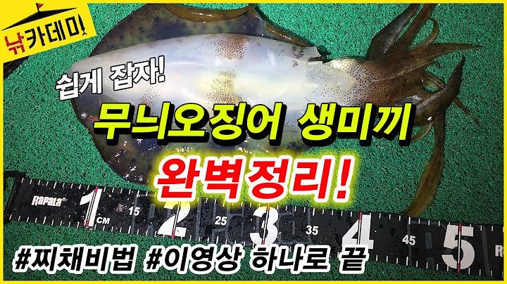 🦑 무늬오징어 찌낚시의 모든것! 생미끼 채비법 완벽정리! 야엔낚시, 전갱이로 오징어 쉽게 잡자!!!! ft.일본 찌바리 고수 김동환님
