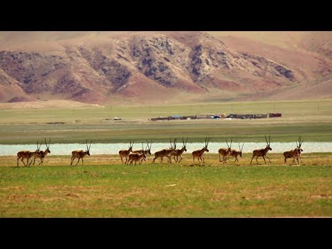 Rediscovering China: Once upon a time in Tibet