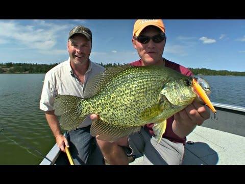 Crappie lake scugog ontario part 3 of 4 doovi for Lake henshaw fishing report