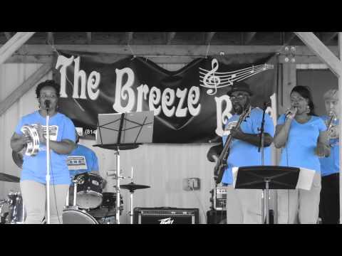 The Breeze Band - Tears of a Clown (Robinson) - Penn Shore Winery July 18, 2015 DSCN0154