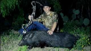 South Texas Hog Hunting at the Callaghan Ranch: Part Two