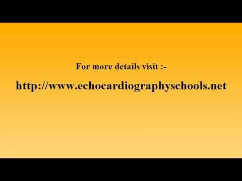 cardiac-sonographer-salary