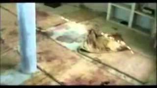 Dokumentation - ISLAM - Messias, Imam Mahdi, Jesus ist erschienen - Ahmadiyya Muslim Jamaat 4/8