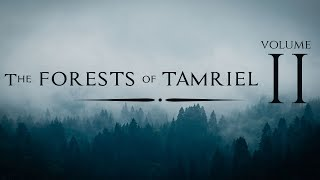 Jeremy Soule — ''In The Forests of Tamriel'' (Vol. 2)  [Forest Pine - Day-B - BSA] (Skyrim)