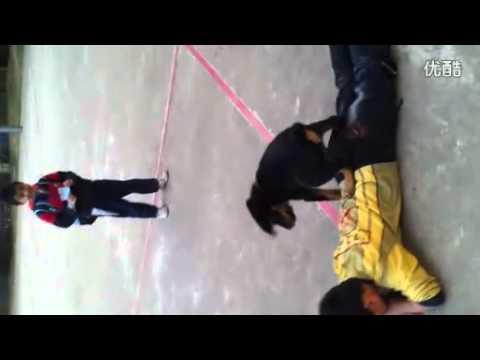 中國AV之人獸交 - YouTube