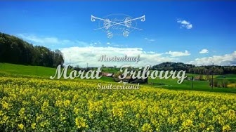 Murtenlauf - complete course (Morat - Fribourg)
