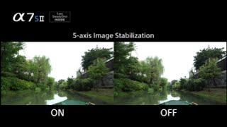 α7S II - 5-axis optical image stabilization | α | Sony