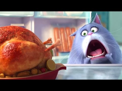 the-secret-life-of-pets-trailer-(animation---movie-hd)