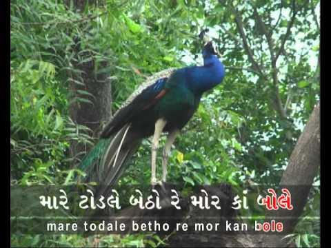 Gujarati Folk Song: Mare todale betho re mor kan bole