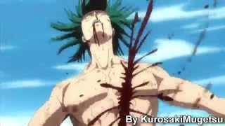 Ichigo, Renji, Ishida, chad & rukia vs Kagerosa
