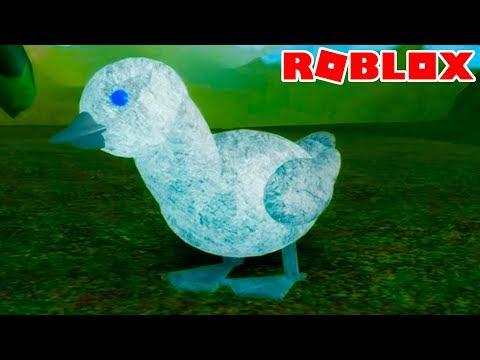 Гадкий утенок или СИМУЛЯТОР Маленькой ПТИЧКИ #1 Кид стал яйцом и лебедем в Роблоксе #КИД