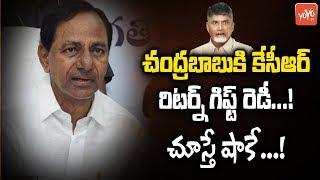 CM KCR All Set to Give Return Gift to Chandrababu | Telangana Politics | AP News | YOYO TV Channel
