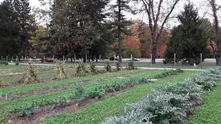 FDR (pan) Small Space Garden Exhibit & Presidential Library 10.24.20