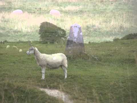 Searching for Lambs with Lyrics (Nick Skelton)