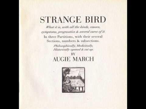 Augie march the night is a blackbird