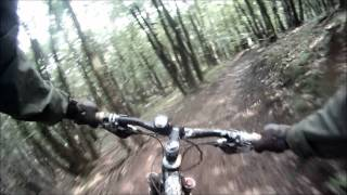 Downhill Mountainbiking Malmedy June 2011