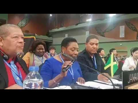The Hon. Olivia 'Babsy' Grange UNESCO speech on reggae to global cultural heritage list