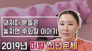2019년 기해년 띠별 신년운세, 토정비결 (돼지띠), 재물복 터지는 나이 또는 액운이 들어와있는 나이는 무…
