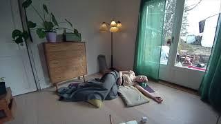 Yoga nidra for gravid - 20 min