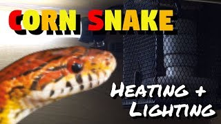 Corn Snake Heating And Lighting