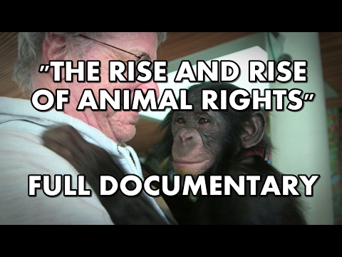The Rise and Rise of Animal Rights | Full documentary