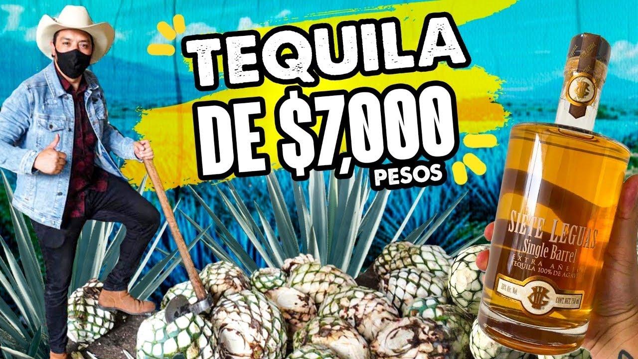 Así se fabrica el TEQUILA 7 Leguas!!! Me regalaron una botella de $7,000 pesos