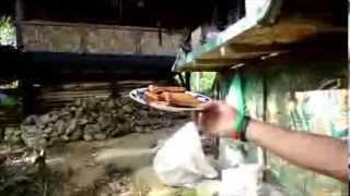 SUMATRA 2013 - život v Green Life