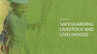 Safeguarding Livestock and Livelihoods