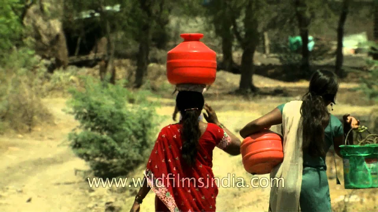 Women Balancing Pots Of Water From A Well In Manegaon