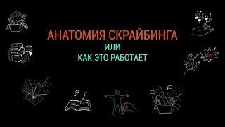 ВЕБИНАР №1: Анатомия скрайбинга. СКРАЙБИНГ-МАРАФОН от Scriberry.ru и Марины Любецкой