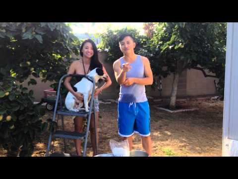 Huy Vu and Quynh Vi 's ALS ice bucket challenge