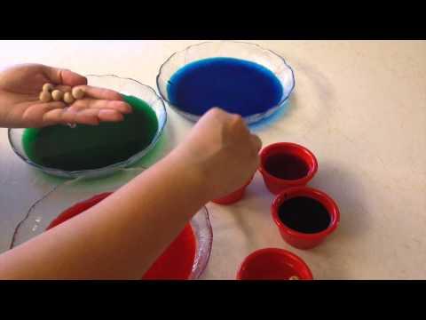 2 Easy DIY Parrot Toys