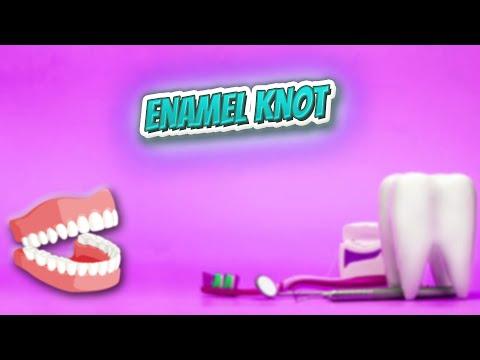 Enamel Knot - Everything Dentistry 🍎👄🔊✅