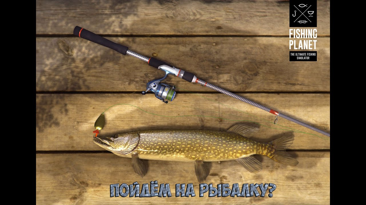 Пойдём на рыбалку?|у меня в голове всякая хрень