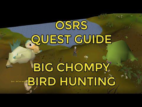 OSRS - Big Chompy Bird Hunting Quest Guide