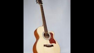Guitar Cần Thơ-Guitar Trường Sa Acoustic HD320 EQ MET B12