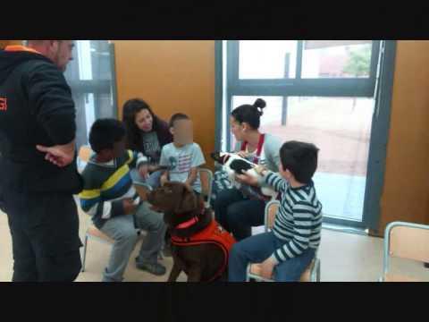 Terapia Asistida con Animales. II Parte Grupo de Niños Usee.Escola Marta Mata