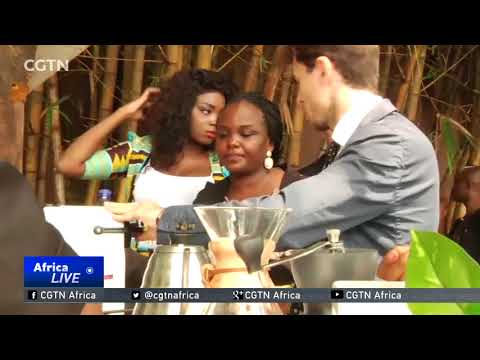 DR Congo aims to boost coffee, cocoa production