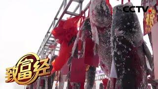 《致富经》 20200413 敢想敢干 冬捕捞金| CCTV农业