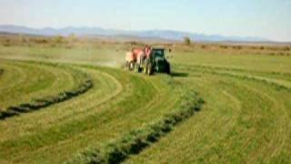 Staheli West Inc. Making Hay While the Sun Shines!