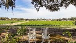 Plant City Home For Sale; 5304 S Farkas rd Plant City FL 33567