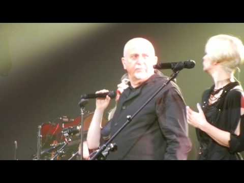 IF YOU LOVE SOMEBODY: Peter Gabriel
